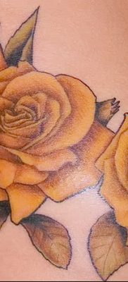 фото тату три розы от 21.08.2017 №111 – Three rose tattoos – tatufoto.com