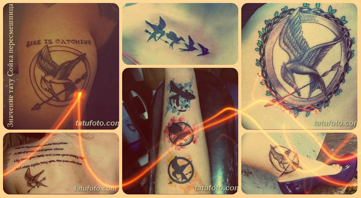 Значение тату Сойка пересмешница - фото коллекция готовых рисунков татуировки