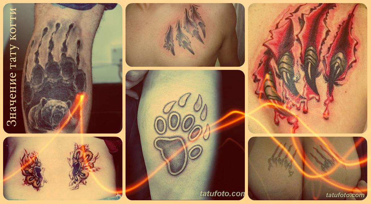 Значение тату когти - фото коллекция примеров готовых татуировок