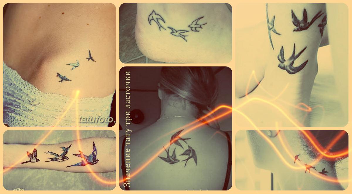 Значение тату три ласточки - фотографии интересных рисунков татуировок