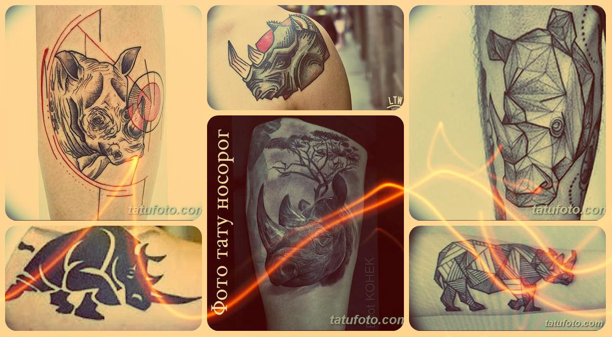 Фото тату носорог - примеры рисунков готовых татуировок на фото