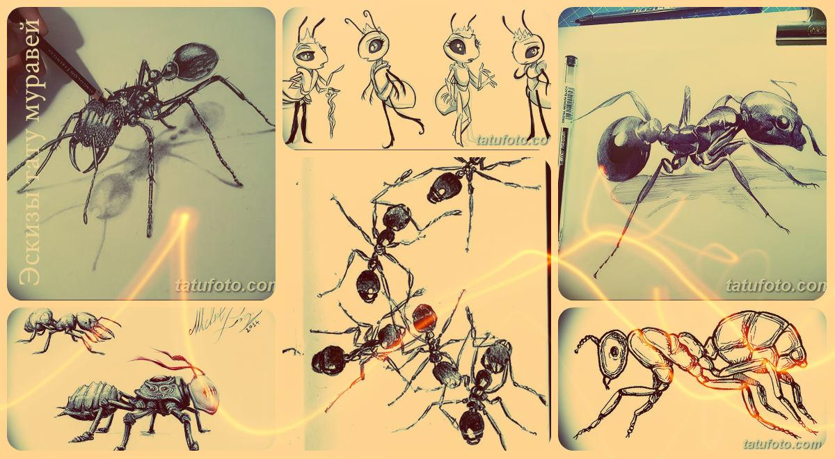 Эскизы тату муравей - коллекция рисунков для татуировки