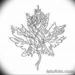 фото Эскизы тату клен от 29.09.2017 №009 - Sketches of tattoo maple - tatufoto.com
