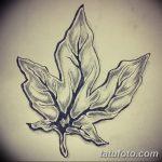 фото Эскизы тату клен от 29.09.2017 №011 - Sketches of tattoo maple - tatufoto.com