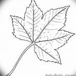 фото Эскизы тату клен от 29.09.2017 №022 - Sketches of tattoo maple - tatufoto.com