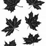 фото Эскизы тату клен от 29.09.2017 №028 - Sketches of tattoo maple - tatufoto.com