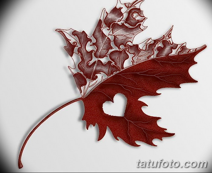 фото Эскизы тату клен от 29.09.2017 №034 - Sketches of tattoo maple - tatufoto.com