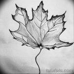 фото Эскизы тату клен от 29.09.2017 №056 - Sketches of tattoo maple - tatufoto.com
