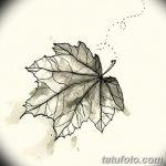 фото Эскизы тату клен от 29.09.2017 №073 - Sketches of tattoo maple - tatufoto.com