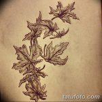 фото Эскизы тату клен от 29.09.2017 №085 - Sketches of tattoo maple - tatufoto.com