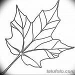 фото Эскизы тату клен от 29.09.2017 №086 - Sketches of tattoo maple - tatufoto.com