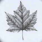фото Эскизы тату клен от 29.09.2017 №088 - Sketches of tattoo maple - tatufoto.com