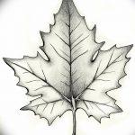 фото Эскизы тату клен от 29.09.2017 №093 - Sketches of tattoo maple - tatufoto.com