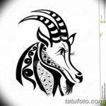 фото Эскизы тату козерог от 29.09.2017 №014 - Sketchesf a capricorn tattoo - tatufoto.com
