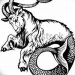 фото Эскизы тату козерог от 29.09.2017 №019 - Sketchesf a capricorn tattoo - tatufoto.com