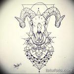 фото Эскизы тату козерог от 29.09.2017 №025 - Sketchesf a capricorn tattoo - tatufoto.com