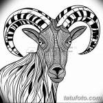 фото Эскизы тату козерог от 29.09.2017 №058 - Sketchesf a capricorn tattoo - tatufoto.com