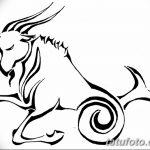 фото Эскизы тату козерог от 29.09.2017 №069 - Sketchesf a capricorn tattoo - tatufoto.com