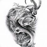 фото Эскизы тату козерог от 29.09.2017 №088 - Sketchesf a capricorn tattoo - tatufoto.com