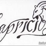 фото Эскизы тату козерог от 29.09.2017 №090 - Sketchesf a capricorn tattoo - tatufoto.com