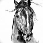 фото Эскизы тату конь от 29.09.2017 №006 - Sketches of a horse tattoo - tatufoto.com