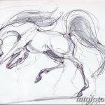 фото Эскизы тату конь от 29.09.2017 №007 - Sketches of a horse tattoo - tatufoto.com