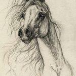 фото Эскизы тату конь от 29.09.2017 №008 - Sketches of a horse tattoo - tatufoto.com