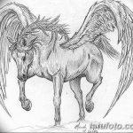 фото Эскизы тату конь от 29.09.2017 №017 - Sketches of a horse tattoo - tatufoto.com