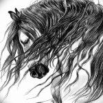 фото Эскизы тату конь от 29.09.2017 №024 - Sketches of a horse tattoo - tatufoto.com