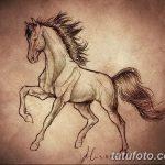 фото Эскизы тату конь от 29.09.2017 №045 - Sketches of a horse tattoo - tatufoto.com