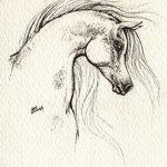 фото Эскизы тату конь от 29.09.2017 №046 - Sketches of a horse tattoo - tatufoto.com