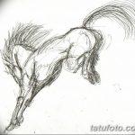 фото Эскизы тату конь от 29.09.2017 №063 - Sketches of a horse tattoo - tatufoto.com