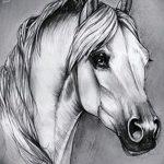 фото Эскизы тату конь от 29.09.2017 №083 - Sketches of a horse tattoo - tatufoto.com