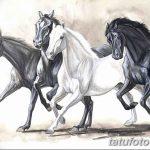 фото Эскизы тату конь от 29.09.2017 №088 - Sketches of a horse tattoo - tatufoto.com