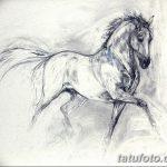 фото Эскизы тату конь от 29.09.2017 №092 - Sketches of a horse tattoo - tatufoto.com