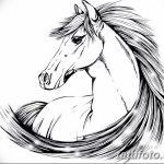 фото Эскизы тату конь от 29.09.2017 №130 - Sketches of a horse tattoo - tatufoto.com