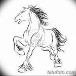 фото Эскизы тату конь от 29.09.2017 №132 - Sketches of a horse tattoo - tatufoto.com