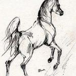 фото Эскизы тату конь от 29.09.2017 №141 - Sketches of a horse tattoo - tatufoto.com