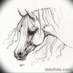 фото Эскизы тату конь от 29.09.2017 №142 - Sketches of a horse tattoo - tatufoto.com
