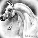 фото Эскизы тату конь от 29.09.2017 №143 - Sketches of a horse tattoo - tatufoto.com