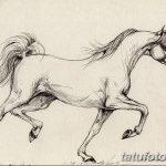 фото Эскизы тату конь от 29.09.2017 №145 - Sketches of a horse tattoo - tatufoto.com