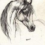 фото Эскизы тату конь от 29.09.2017 №152 - Sketches of a horse tattoo - tatufoto.com