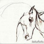 фото Эскизы тату конь от 29.09.2017 №155 - Sketches of a horse tattoo - tatufoto.com