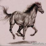 фото Эскизы тату конь от 29.09.2017 №161 - Sketches of a horse tattoo - tatufoto.com
