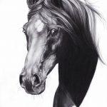 фото Эскизы тату конь от 29.09.2017 №166 - Sketches of a horse tattoo - tatufoto.com