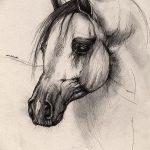 фото Эскизы тату конь от 29.09.2017 №175 - Sketches of a horse tattoo - tatufoto.com