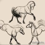 фото Эскизы тату конь от 29.09.2017 №184 - Sketches of a horse tattoo - tatufoto.com
