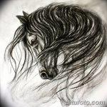фото Эскизы тату конь от 29.09.2017 №196 - Sketches of a horse tattoo - tatufoto.com