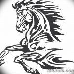 фото Эскизы тату конь от 29.09.2017 №209 - Sketches of a horse tattoo - tatufoto.com