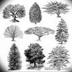 фото Эскизы тату лес от 29.09.2017 №007 - Sketches of a forest tattoo - tatufoto.com